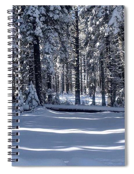 Winter Magic Spiral Notebook