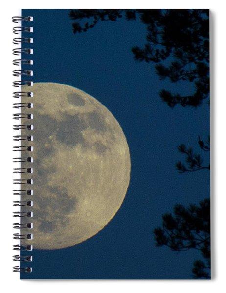 Winter Moon Spiral Notebook