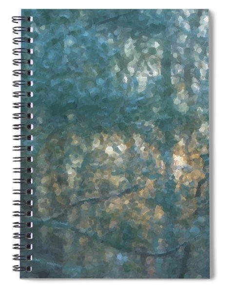Winter Morning Glory Spiral Notebook