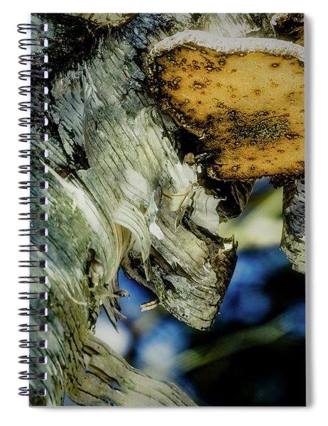 Winter Mushroom Spiral Notebook