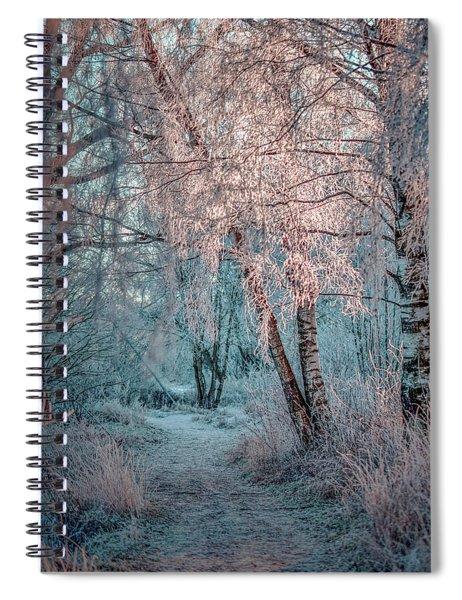 Winter Path #h1 Spiral Notebook