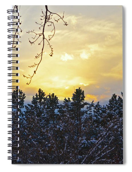 Winter Sunset On The Tree Farm #1 Spiral Notebook
