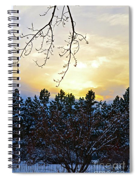 Winter Sunset On The Tree Farm #2 Spiral Notebook