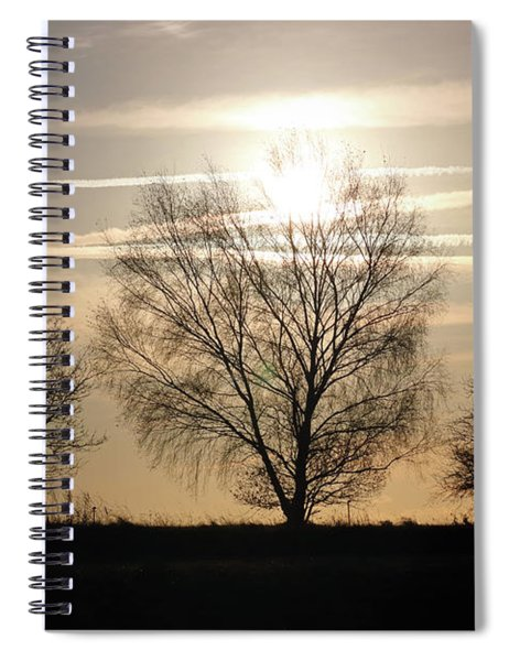 Winter Sunset Through Trees On Epsom Downs Surrey Uk Spiral Notebook