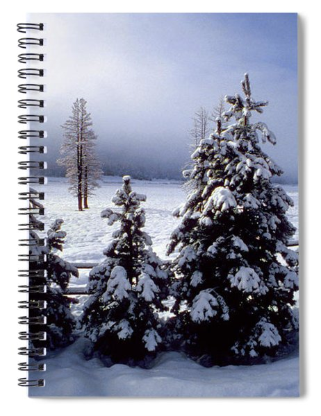 Winter Takes All Spiral Notebook