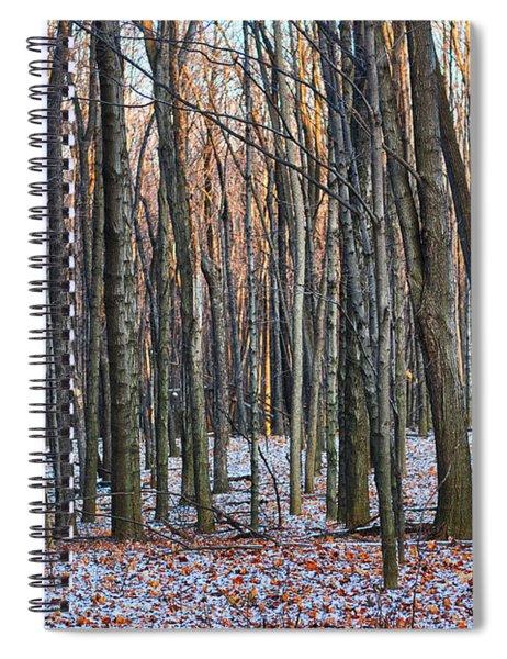Winter - Uw Arboretum Madison Wisconsin Spiral Notebook
