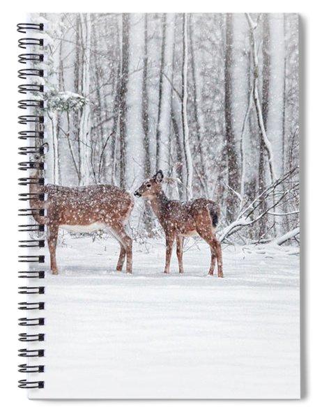 Winter Visits Spiral Notebook