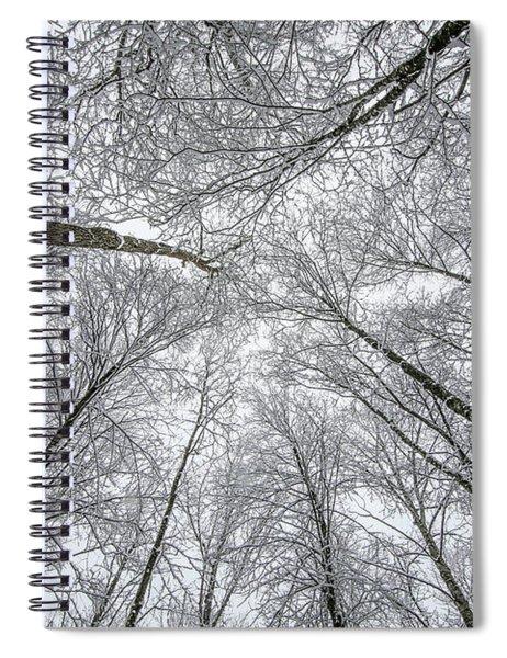 Winter Web Spiral Notebook