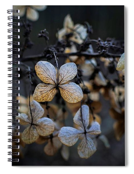 Winterized Hydrangea Spiral Notebook
