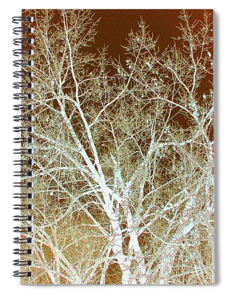 Winter's Dance Spiral Notebook