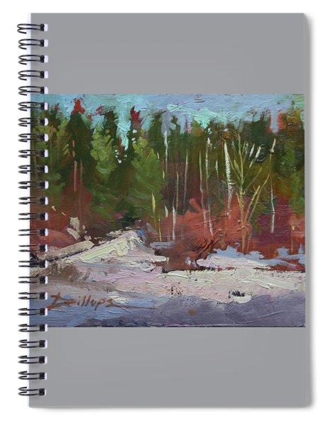 Winter's Eve Spiral Notebook