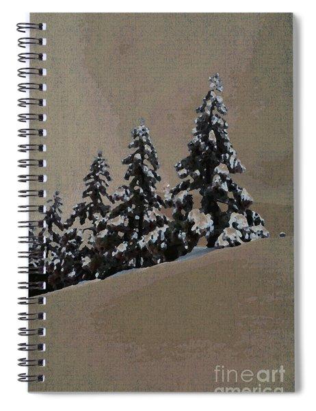 Winters Eve Spiral Notebook