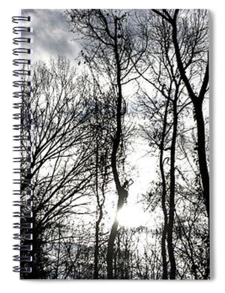 Winter's Mystic Horizon Spiral Notebook