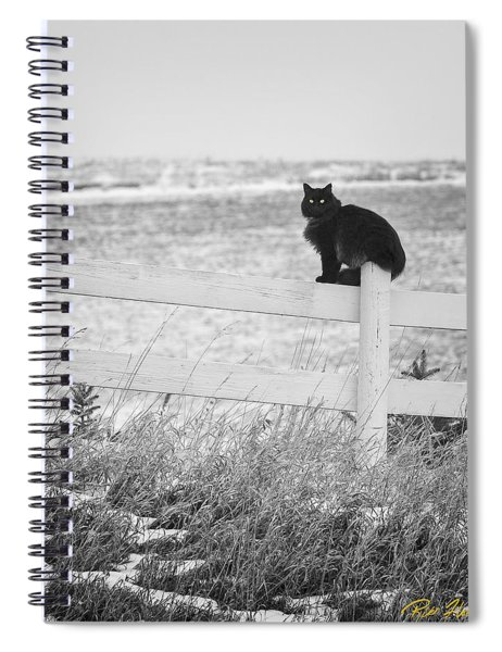Winter's Stalker Spiral Notebook