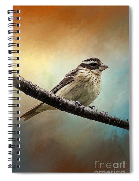 Wisconsin Songbird Spiral Notebook