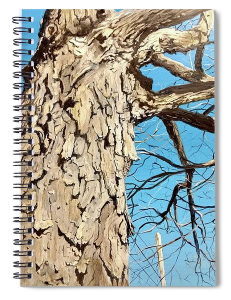 Witness Spiral Notebook