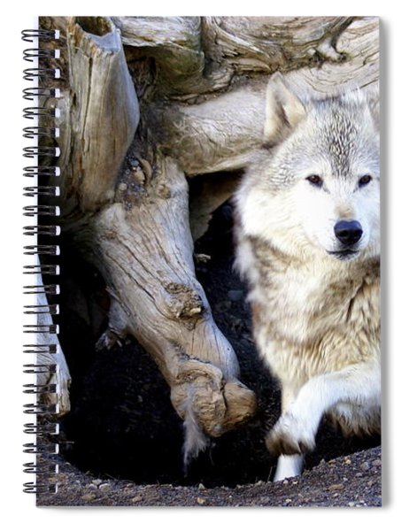 Wolf Den 1 Spiral Notebook