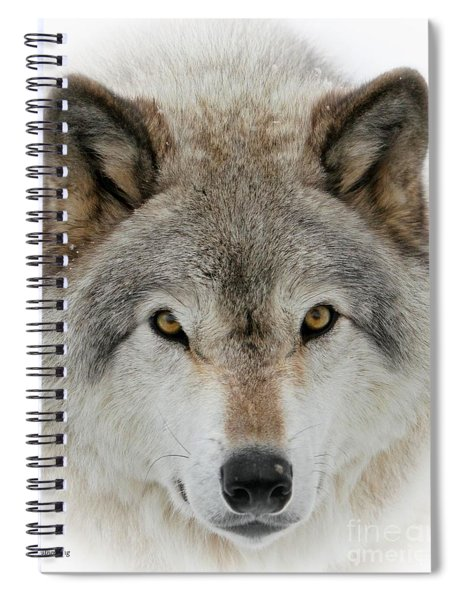 Wolf Portrait Spiral Notebook