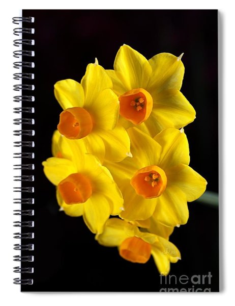 Wonderful Jonquils Spiral Notebook