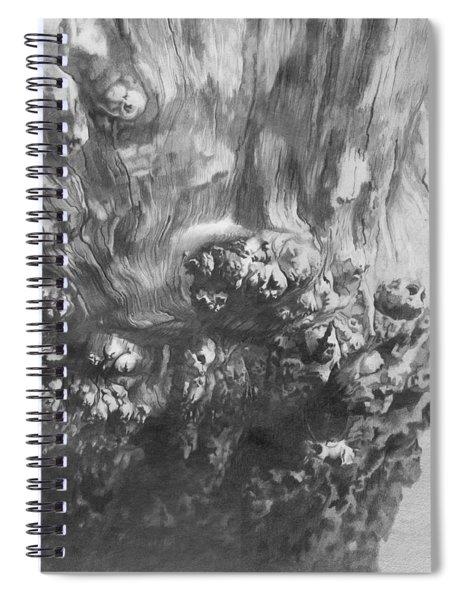 Woodknob  Spiral Notebook