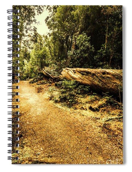 Woodland Nature Walk Spiral Notebook