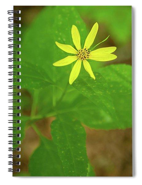 Woodland Sunflower Spiral Notebook