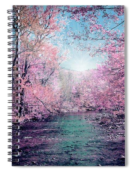 Woods 4 Spiral Notebook