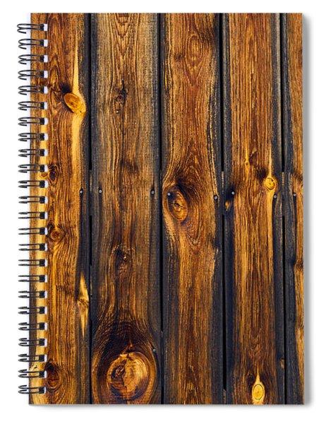 Woody Tiger Spiral Notebook