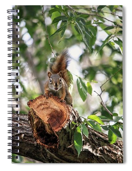 Wrong Branch Spiral Notebook