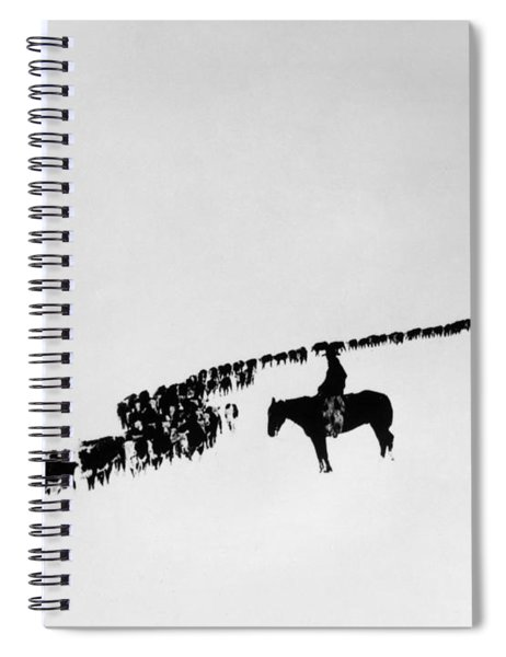 Wyoming: Cattle, C1920 Spiral Notebook
