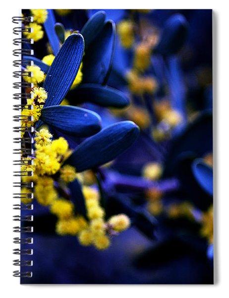 Yellow Bursts In Blue Field Spiral Notebook
