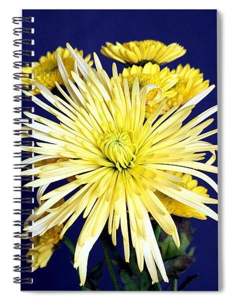 Yellow Chrysanthemums On Blue Spiral Notebook