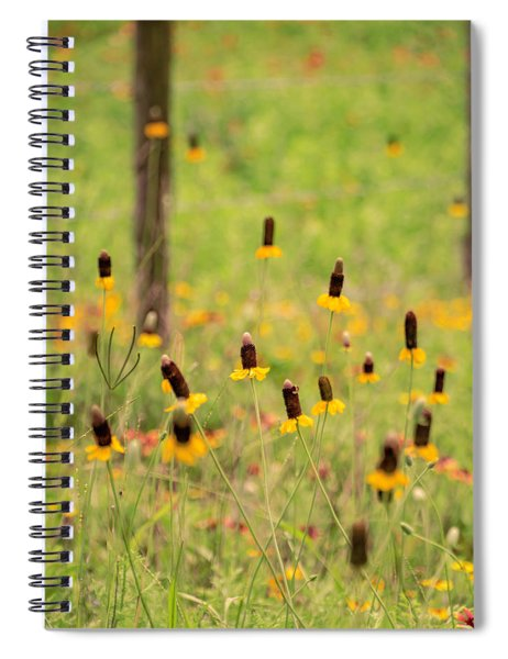 Yellow Cone Flower Spiral Notebook