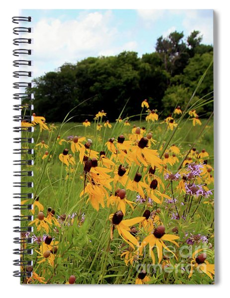 Yellow Cone Flowers Spiral Notebook