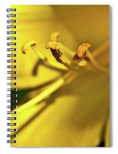 Yellow Daylily Spiral Notebook