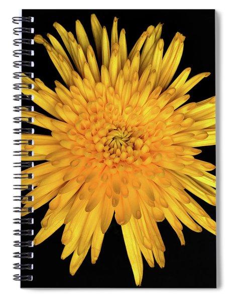 Yellow Flower Macro Spiral Notebook