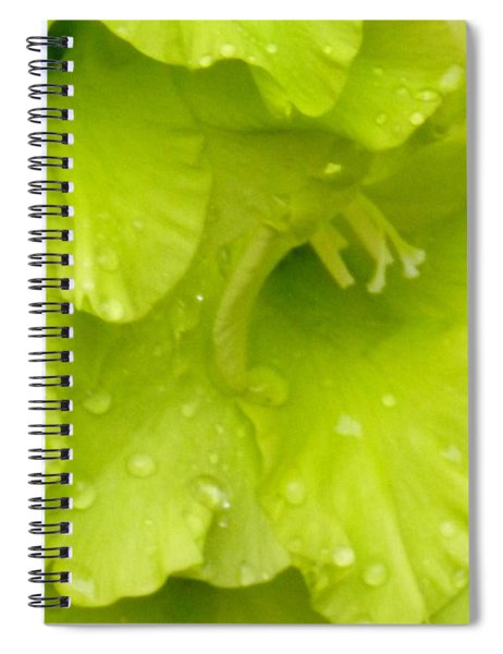 Yellow Gladiola Refreshed Spiral Notebook