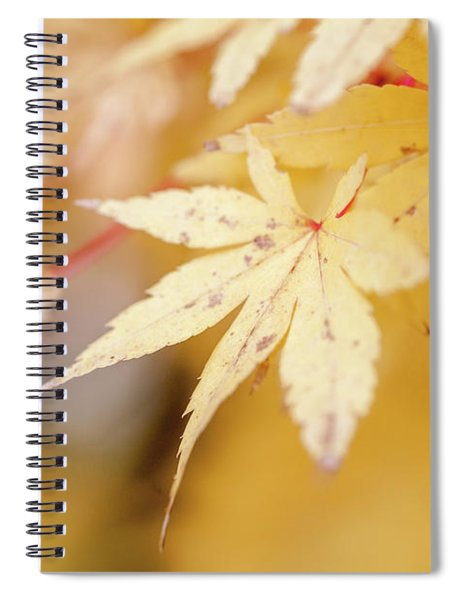 Yellow Leaf With Red Veins Spiral Notebook