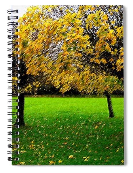 Yellow Leaves At Muckross Gardens Killarney Spiral Notebook