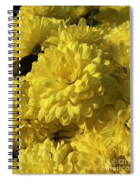 Yellow Mums Spiral Notebook