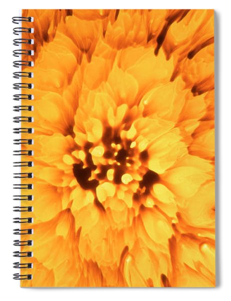 Yellow Flower Under The Microscope Spiral Notebook