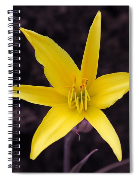 Yellow Star Spiral Notebook