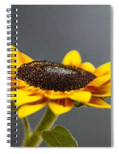 Yellow Sunflower Photograph Spiral Notebook