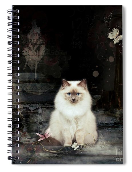 You Are My Rock Spiral Notebook