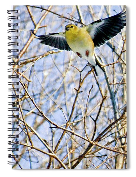 You Are My Sweet Angel Spiral Notebook