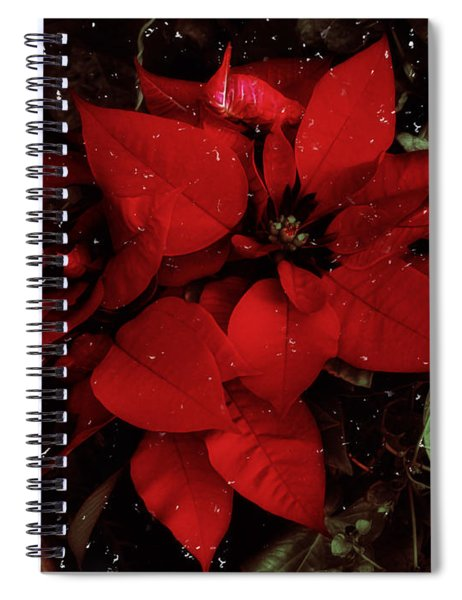 You Know It's Christmas Time When... Spiral Notebook