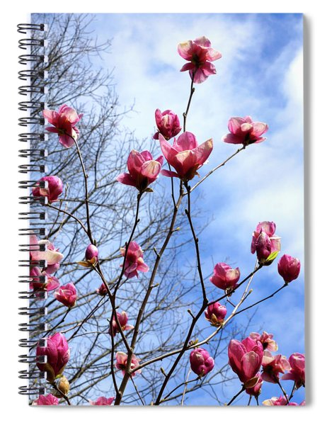 Young Blooms Spiral Notebook