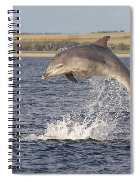 Young Bottlenose Dolphin - Scotland #13 Spiral Notebook
