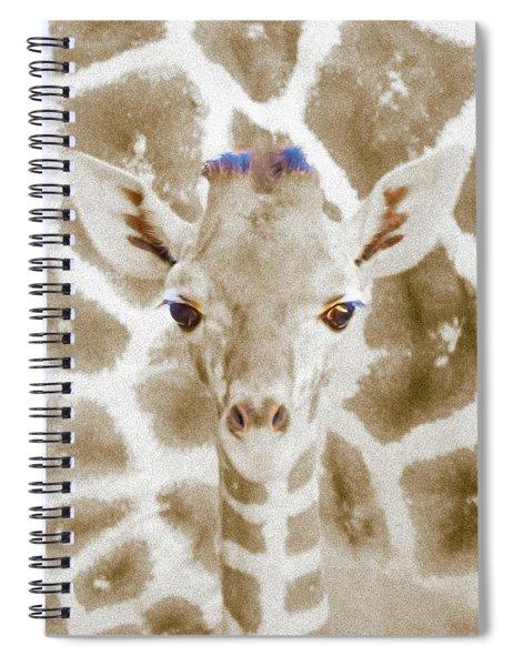 Young Giraffe Spiral Notebook