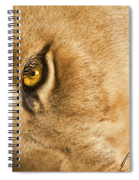 Your Lion Eye Spiral Notebook